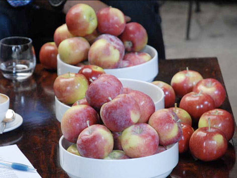 Organic apples from the Maniadakis Orchard in Quebec