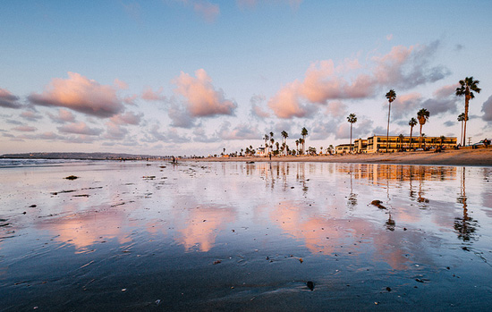 Reflections of the shoreline and palm trees at Ocean Beach, San Diego