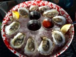 Sippewissett Oysters